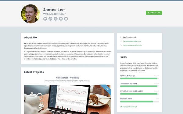Responsive HTML5 Website Template for Developers - Developer