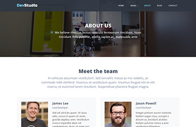 Bootstrap theme for web development agencies - DevStudio - About Page