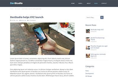 Bootstrap theme for web development agencies - DevStudio - Blog Post Page